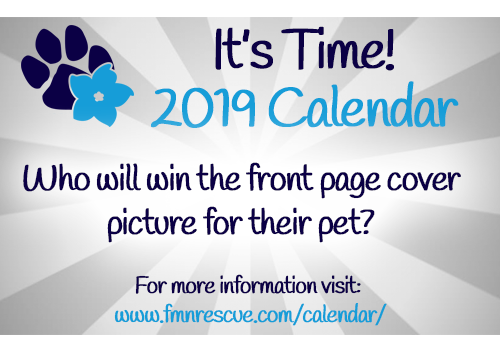 2019 Pet Calendar Photo Contest.