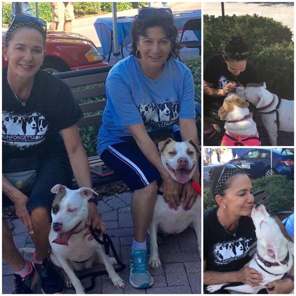 Shiloh and Blanca out for a walk with our volunteers at Forget-Me-Not Inc.!
