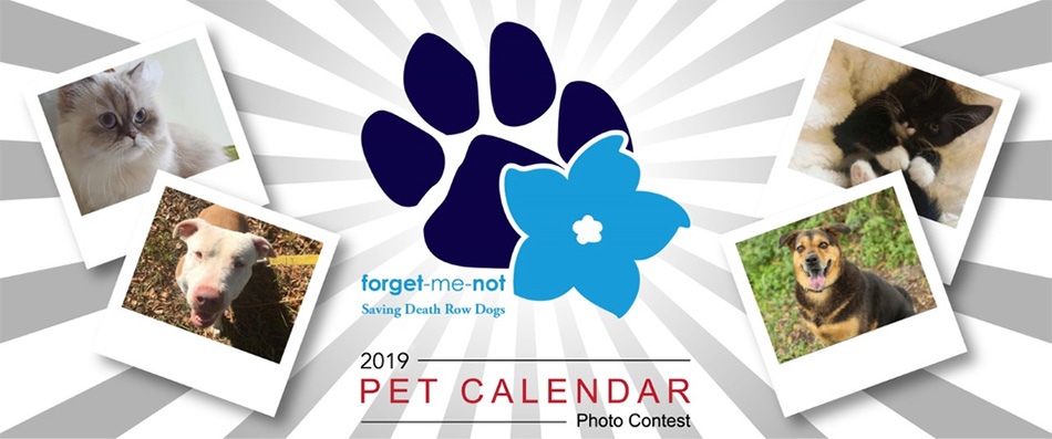 Forget-Me-Not 2019 Pet Calendar Photo Contest